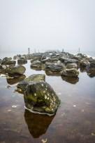 Grevelingenmeer im Nebel.