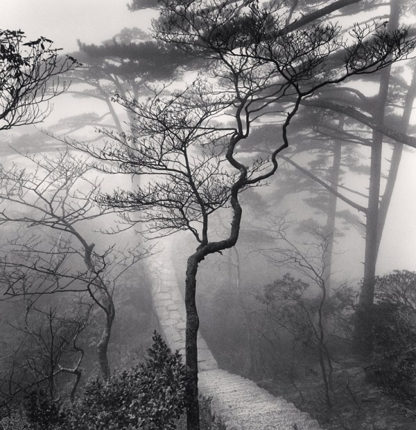 Huangshan Poems T'ang Dynasty - Michael Kenna Store