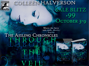 through-the-veil-sales-blitz