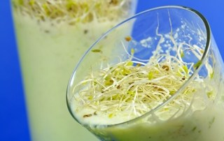 Making a Green Energy Elixir