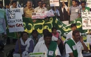 India, NO GMO