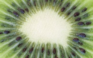 Raw Kiwi Fruit
