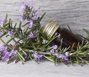 Healthy Essential Oils