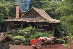 Costa Rican Rural Home