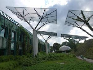 Panels for Solar
