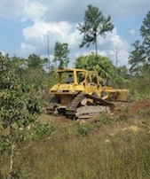 Bulldozer in Belize