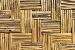 Decorative Bamboo