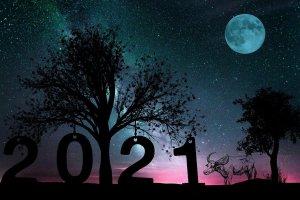 2021 New Year