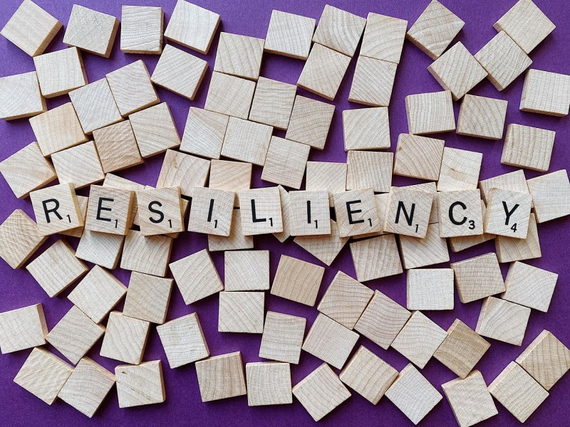 Resilient Resiliency Resilience