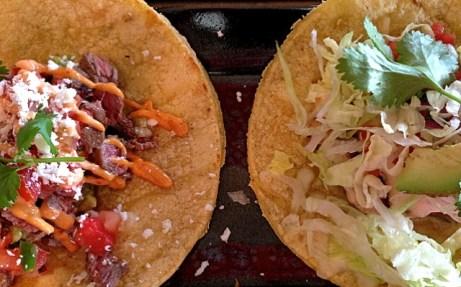 taco vampiro & fish taco