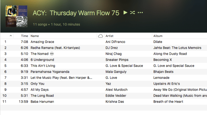 Yaz Playlist from Warm Vinyasa Last Night | The Smell of Feet and