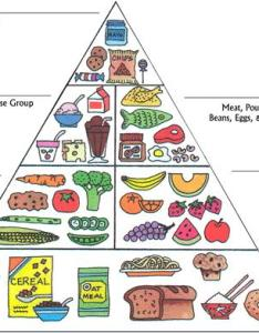 Food pyramid also myplate controversy pie chart to cure obesity  mike rucker ph  rh michaelrucker