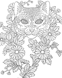 Sexy Lingerie Coloring Pages Coloring Pages