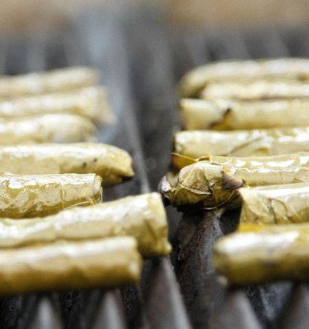 נפנופים תאילנדים / עלי גפן במילוי בשר צלויים על גריל / סלט פומלה עם שקדים ירוקים