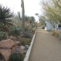 Springs Preserve February 2012 342
