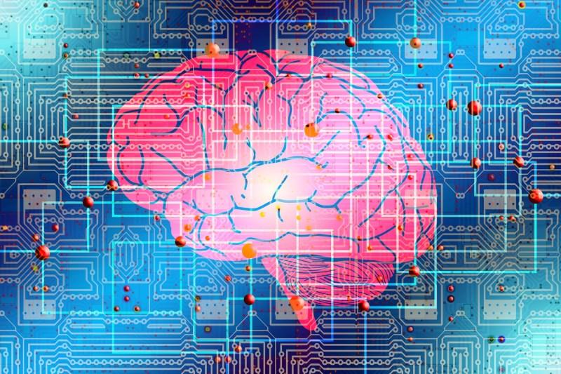 La psicoterapia cambia il cervello_neuroscienze
