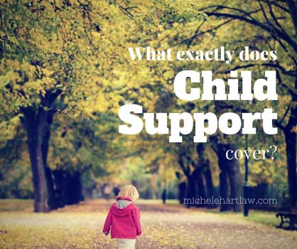 Child Support Cover Letter
