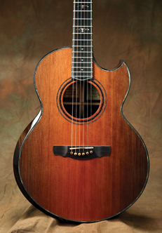 Acoustic Guitar Central Recycled Tonewoods