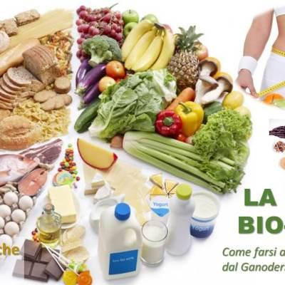 Download e-book Dieta Bio-Gano