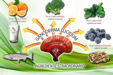 Il Ganoderma come rimedio naturale per combattere i segni del tempo.