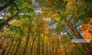 beaux paysages par Michel HUGUES Photographie - www.michelhugues.com