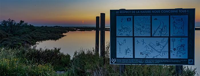 la pratique de la photographie en pleine nature exige de chaque photographe d'avoir un comportement particulièrement responsable envers le respect et la protection des espèces naturelles MH - www.michelhugues.com -
