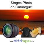 Découvrez les stages-photo MH en Provence (Camargue + Alpes Haute Provence)
