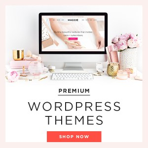 I recommend BluChic Wordpress Themes