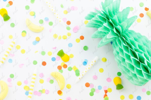 Styled Stock Photography - Tropical Party Collection #03