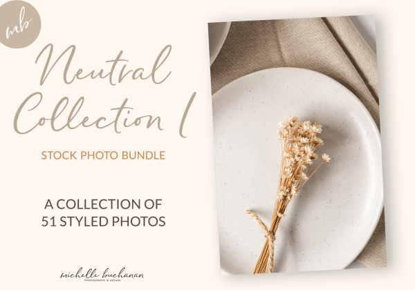 Neutral Collection 1 stock photo bundle