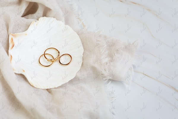 Neutral stock photo - Michelle Buchanan Photography & Design