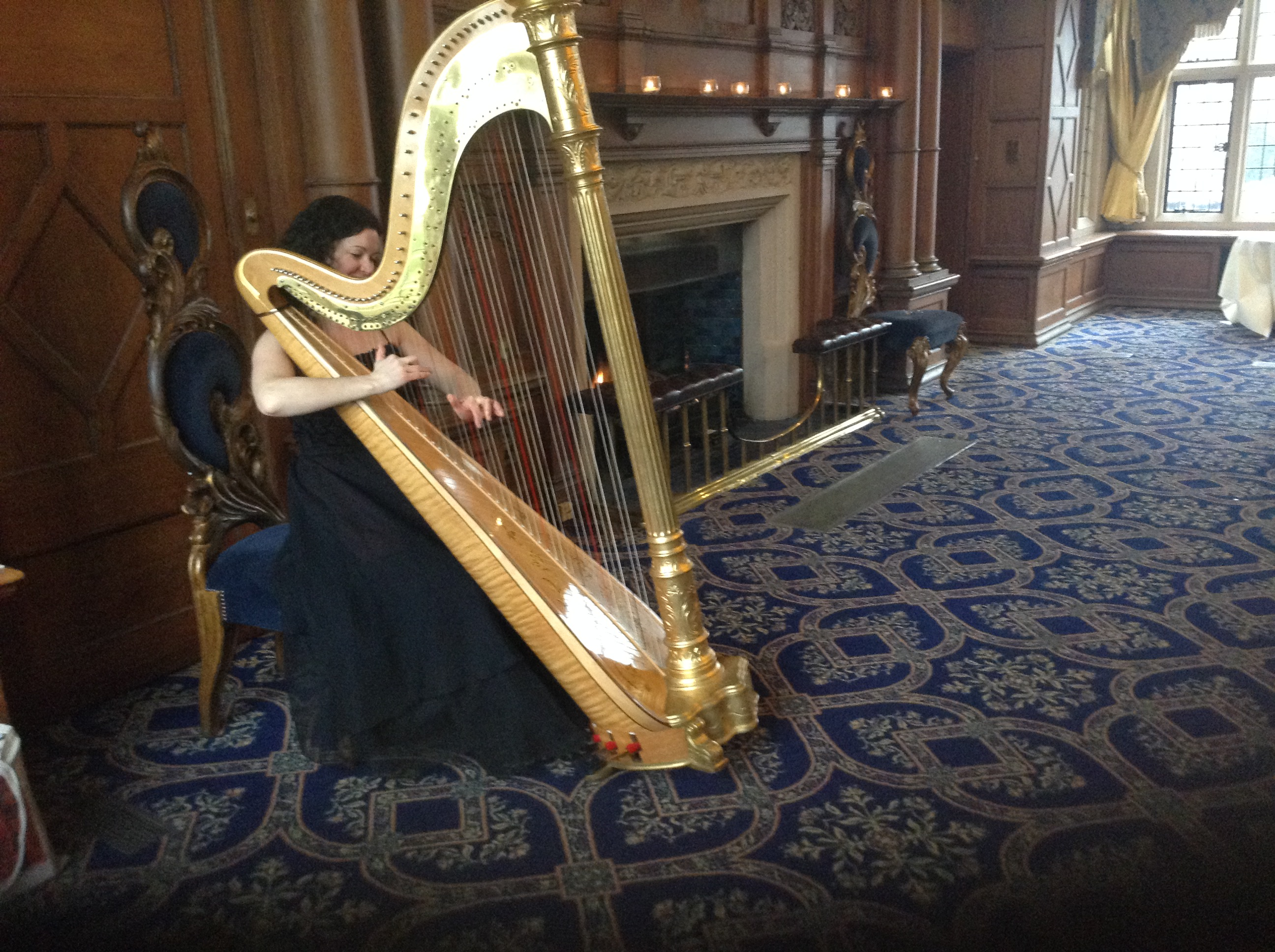 Celebration of Life event harpist plays for Birmingham, Sutton Coldfield and Wolverhampton funerals