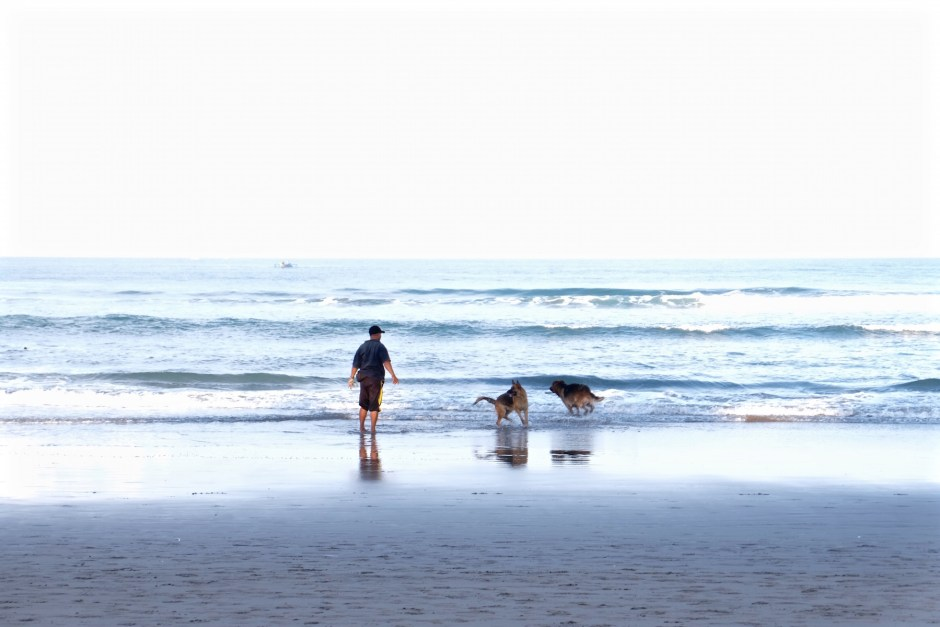 Kuta beach Dog Friendly