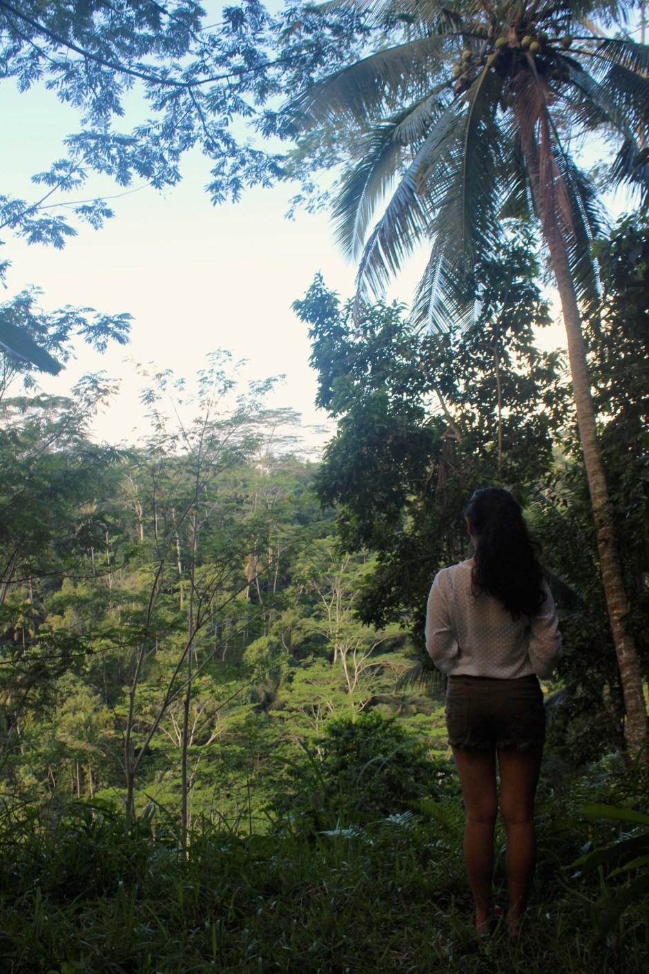 Somewhere in Ubud