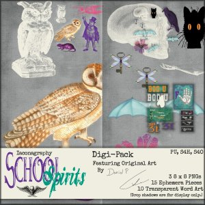 schoolspiritsdigipackdisplay