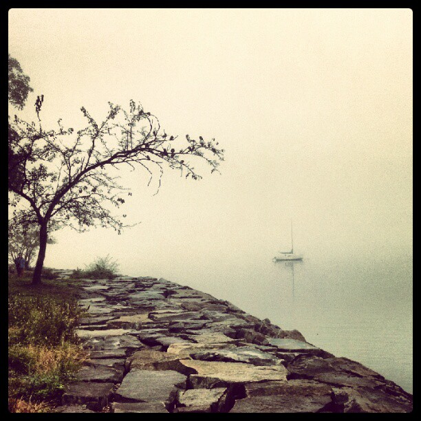 Where's the Throgs Neck Bridge ? #Bayside #NYC #fog #forttotten