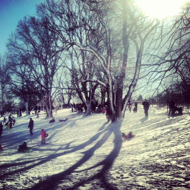 Sledding #photography #snow #NYC #Queens