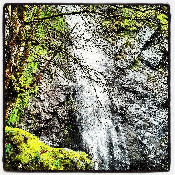 Roadside Waterfall #California #travel #landscape #photography #laketahoe