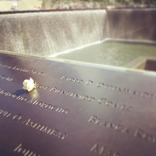 Rose, North Pool, 9/11 Memorial #newyork #photography #memorial #neverforget