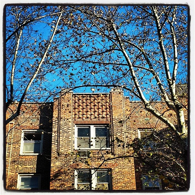 Sunnyside #apartment #queens #newyork #architecture