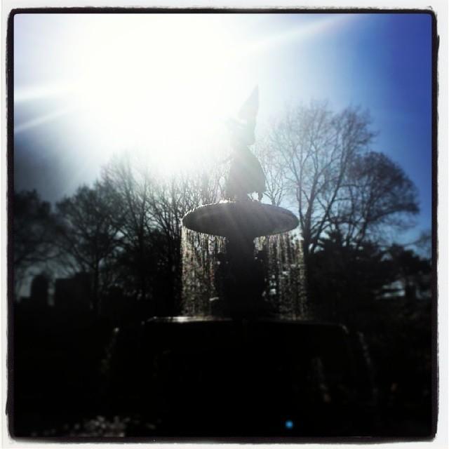 Bethesda Fountain #centralpark #centralparknyc #landmark #newyork #nyc