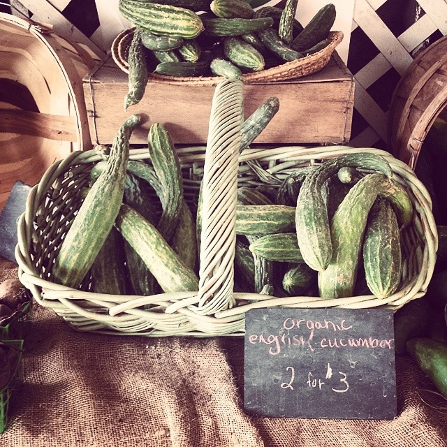 English cucumbers #farm #farmstand #sustainableagriculture #delicious #longisland