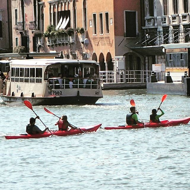 Let's kayak on the Grand Canal ! #chebellavenezia #venice #italy #faschifo #acquasporca #grandcanal
