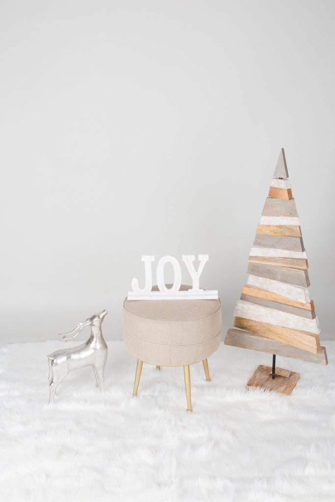 Holiday Mini Sessions - Props