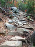 Rock steps along the trail