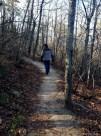 On the Sassafras Trail