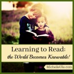 Learning to Read: the World Becomes Knowable!