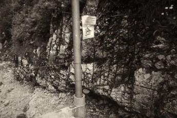 Grenze 21