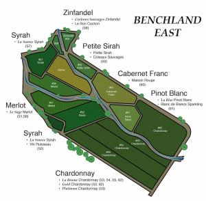 Benchland Wine Estate