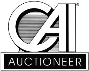 Image result for Auctioneers ask BPP to engage only certified professionals